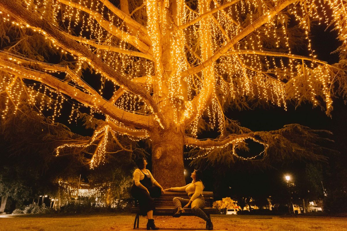 Two women sit beneath a large tree decorated with Christmas lights