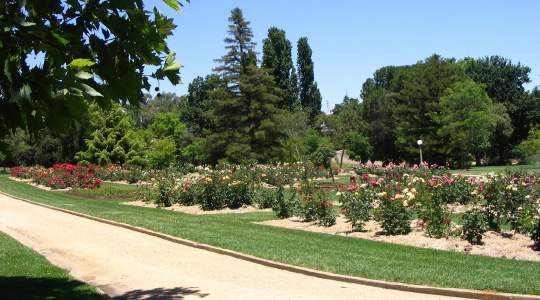 Botanic Gardens Wagga City Council